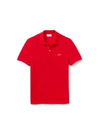 Lacoste Polo Yaka Tişört Kırmızı